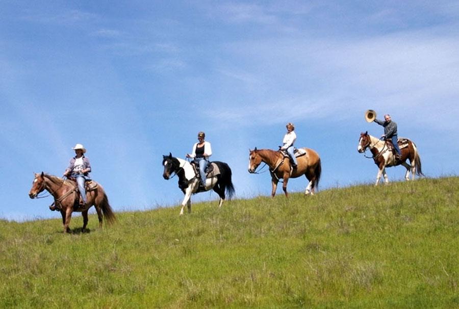 12214_12378_Yosemite_Horse_trail_Rides_lg